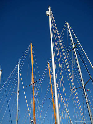 Photograph - Masts by Leena Pekkalainen