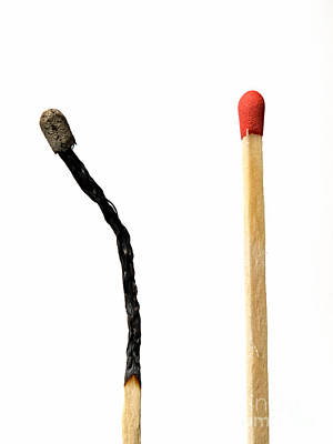 Burnt Wood Photograph - Matches Combustion by Sinisa Botas