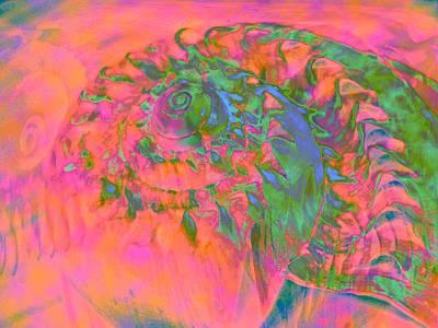 Materialization Of A Shell Art Print