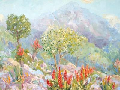Mathew's Rockery Kirstenbosch  Original by Elinor Fletcher