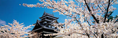 Matsue Castle Cherry Blossoms Shimane Art Print by Panoramic Images