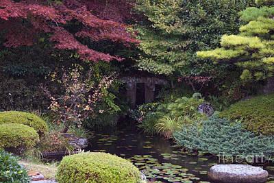 Art Print featuring the photograph Matsue Garden by Cassandra Buckley