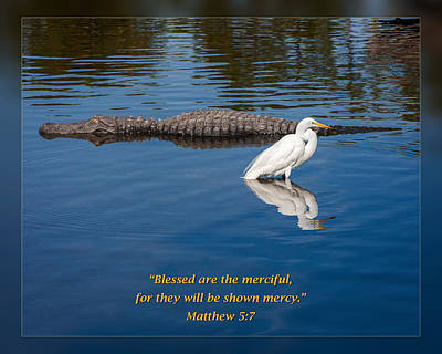 Matthew 5 7 Art Print
