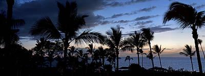 Modern Feathers Art - Maui by Aaron Kittredge