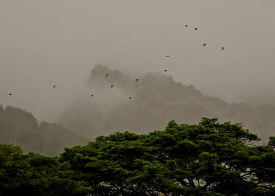 Photograph - Maui Mists And Flying Birds by Kirsten Giving