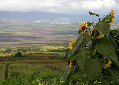 Photograph - Maui Northwest View by Robert Lozen