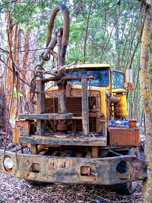 Photograph - Maui Pine Truck 13 by Dawn Eshelman