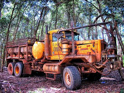Photograph - Maui Pine Truck 2 by Dawn Eshelman