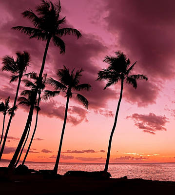 Photograph - Maui Silhouette Sunset by Athena Mckinzie