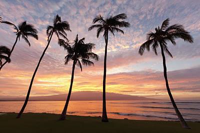 Maui Sunrise Art Print