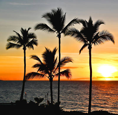 Photograph - Maui Sunset by Athena Mckinzie