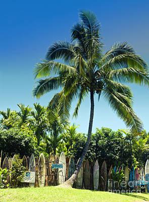 Photograph - Maui Surfboard Fence Peahi Maui Hawaii by Sharon Mau