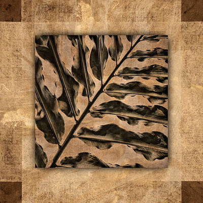 Collage Photograph - Maui Tropic Brown by Carol Leigh