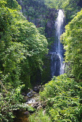 Photograph - Maui Waterfall by Marilyn Wilson