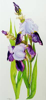 Floral Still Life Painting - Mauve And Purple Irises With Two Buds  by Joan Thewsey