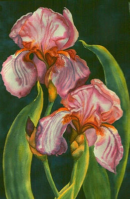 Painting - Mauve Irises by Ruth Soller
