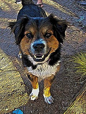 Dog Rescue Digital Art - Max by Jen  Brooks Art