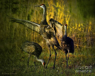Animals Digital Art - May I Have This Dance by Lianne Schneider