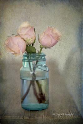 Photograph - May Roses by Nancy Morgantini