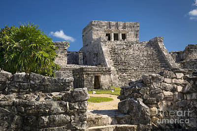 Photograph - Mayan Temple by Brian Jannsen