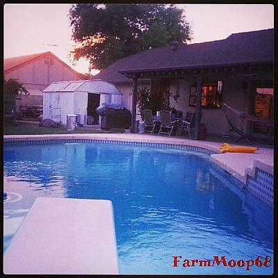 Patio Photograph - #mayfair #poolside #paradise #backyard by Dave Moore