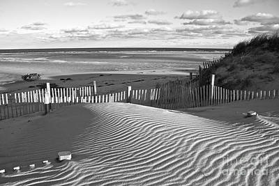 Mayflower Beach Black And White Art Print