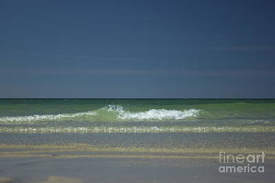Mayflower Beach On Cape Cod Art Print