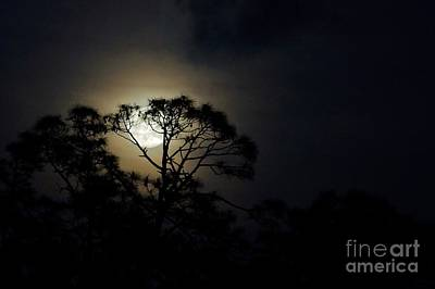 Photograph - May's Flower Moon by Lynda Dawson-Youngclaus