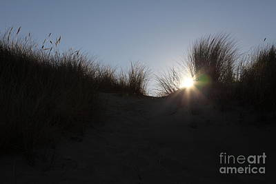 Mcclure Beach Sand Dunes At Point Reyes California - 5d21346 Print by Wingsdomain Art and Photography