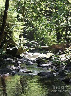 Photograph - Mcdowell Creek 2 by Erica Hanel