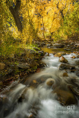 Photograph - Mcgee Creek 3 by Alexander Kunz