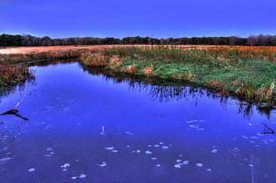 Just Desserts - Black Tern Marsh at McHenry Dam Wetlands by Roger Passman
