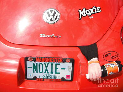 Damariscotta Photograph - Moxie Power by GJ Glorijean