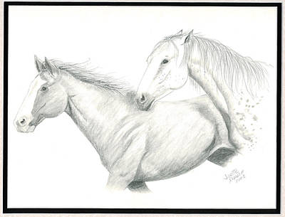Wild Horses Drawing - Me First by Joette Snyder