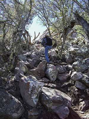 Photograph - Me Hiking The Top Of Emory Peak by Amber Kresge