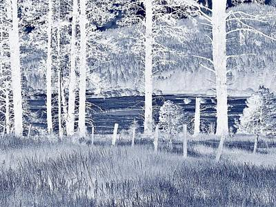Meadow 9 Art Print