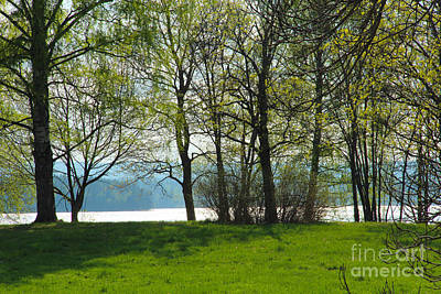 Spring Photograph - Meadow And Trees By A Lake In The Spring by Kerstin Ivarsson
