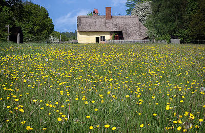 Photograph - Meadow Cottage by Stephen Norris