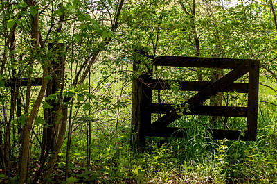 Photograph - Meadow Gate by Gene Sherrill