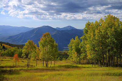 Wasatch Mountains Photograph - Meadow Highlights by Chad Dutson