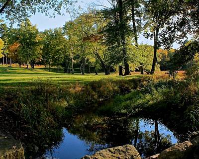 Photograph - Meadow In Lancaster Ma by Michael Saunders