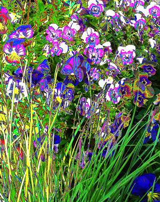 Photograph - Meadow In Symphony by Diane Miller