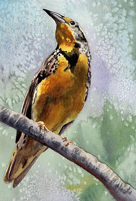 Meadowlark Painting - Meadowlark by Anne Gifford