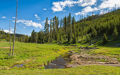 Photograph - Meadows And Springs by John M Bailey