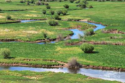 Arapaho National Wildlife Refuge Photograph - Meander by Chris Selby