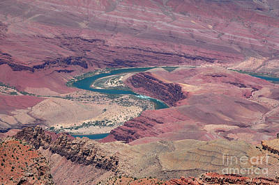 Photograph - Meandering Colorado River by Debra Thompson