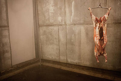 Carcass Photograph - Meat Carcass In A Freezer, No People by Monica Donovan