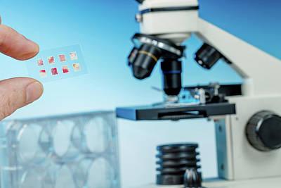 Medical Samples On Microscope Slide Art Print by Wladimir Bulgar