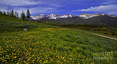 Photograph - Medicine Bow by Barbara Schultheis