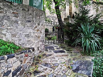 Photograph - Medieval Garden by Elvis Vaughn